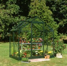 Royal Well Popular 046 - 193cm x 131cm (groen gecoat, tuindersglas 3mm)